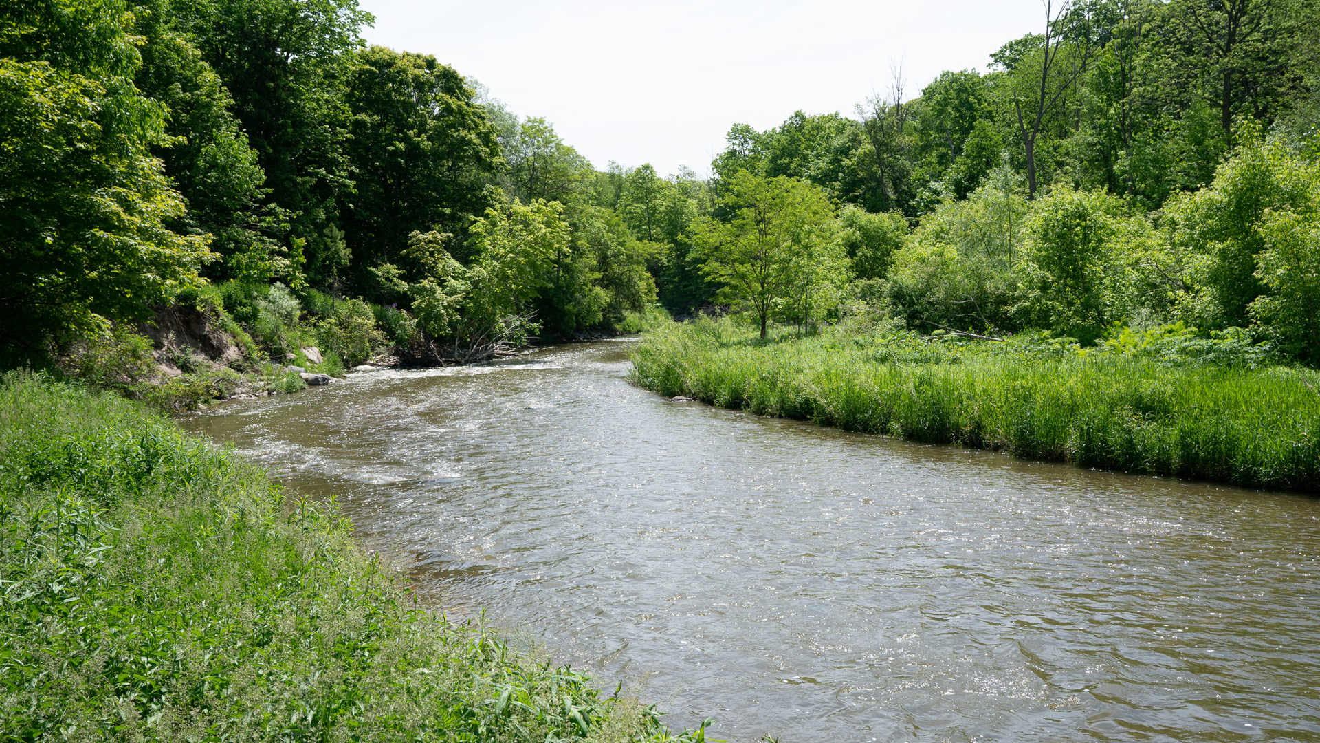 Schitts Creek 3 - River and green landscape